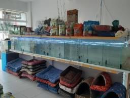 Bateria de aquario