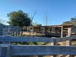 Velleda oferece 4 hectares c/ campo ideal para cavalos ou ovelhas, luz CEEE