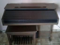 Órgão Minami Série Ouro