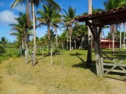 Vendo fazenda presidente Tancredo Neves