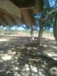 Chacara em Mucajai região do tamandare