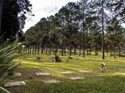 Jazigo 04 Gavetas Cemitério Jardim Da Colina S. B. Do Campo