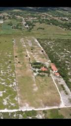 Haras em Pindoretama