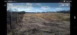 Vende ou troco área de terra para roça sítio angical