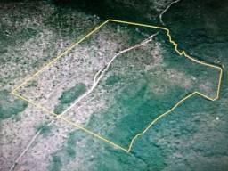 Vende-se 57 hectares de terra na Fazenda Boa Esperança, Alto Parnaíba -MA