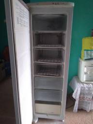 Entrego Freezer Vertical 220volts