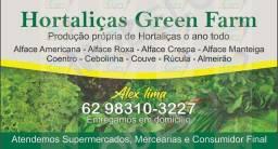 Hortaliças orgânica