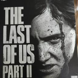 Collector edition The Last of us part ll