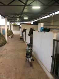 Vendo ou Alugo Baias pra cavalo em Juazeiro do Norte