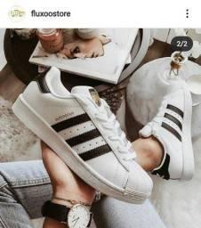 Adidas superStar c/garantia de 1ano