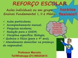 Professor de Reforço - Todas as Disciplinas - Acompanhamento Mensal
