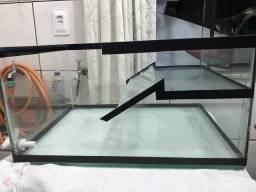Guarapuava aquário