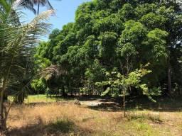 Vendo terreno com igarapé em castanhal