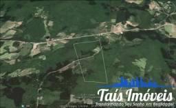 Área de 21 hectares em Cerro Grande do Sul