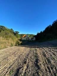 Plantação de Soja - Campo Alegre