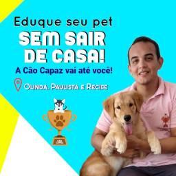 *POUCAS VAGAS* Adestramento de cães em domicílio