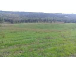 Fazenda Ipiranga-Parana