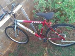 Bike ciclo Ribeiro
