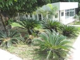 Casa com 4 dormitórios à venda, Lote 5000 m² por R$ 2.200.000 - Braúnas - Belo Horizonte/M