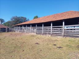 Fazenda 184 alqueires a venda em Caldas Novas, Goiás