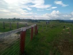 Credito rural terra boa