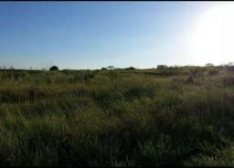 Fazenda Santa Maria 280 hectares Monção Maranhão com açude próximo