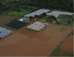 Fazenda/Sítio/Chácara a venda com 13 hectares, com 3 quartos em Taquara - Planaltina- Bras
