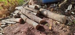 Doação tocos de madeira
