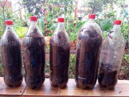 Adubo/Esterco de Galinha/Galo 2 kg - O melhor para sua horta, jardim ou pomar + brindes