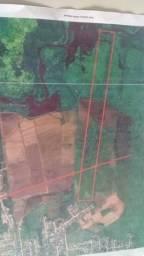 Área Plantação de Arroz ou Criação de Gado