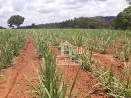 Fazenda à venda, 503 alqueires por R$ 45.270.000 na cidade de Cerqueira César/SP