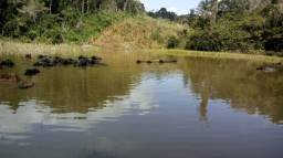 Fazenda em Camamu muito barata oportunidade área total 500 hect preço por hect R$ 3.000.00