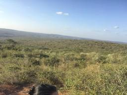 Fazenda 2 mil tarefas escriturada jeremoabo-BA