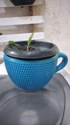 Vaso de xicara+ florzinha