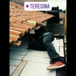Dedetização em Teresina