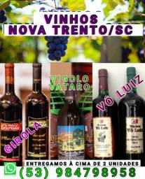 Vinhos de Nova Trento Santa Catarina
