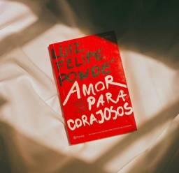 Livro Amor Para Corajosos
