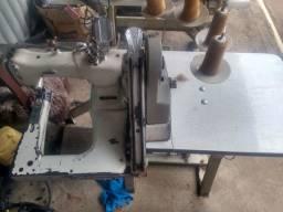 Maqui de costura