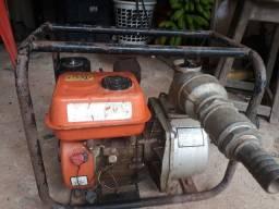 Motor bomba d'água 6.5
