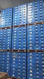 Caixas engradados de cerveja 300 ml sem vasilhames - Wall-e