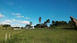 Vende-se Terreno em JK Mata de São João