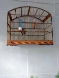 2 gaiola pra vender  100 reais as duas
