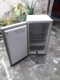 Mini freezer 120 litros entrego passo cartão