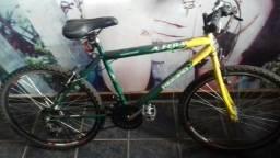 Bicicleta (BRASIL)