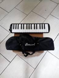 Escalheta concert com mochila (usada)
