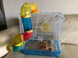 2 Hamsters com gaiola e comidas