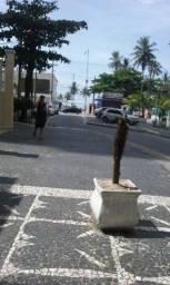 Kitnet temporada Guarujá, pitangueiras frente ao mar