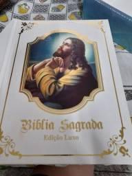 Bíblia sagrada- edição luxo