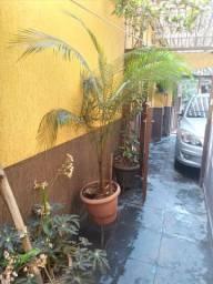 Plantas ornamentais e frutíferas