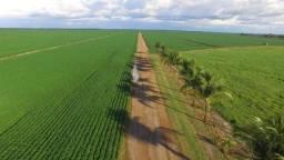 Fazenda 790 Hectares Plantando Safra e Safrinha - Sorriso - MT